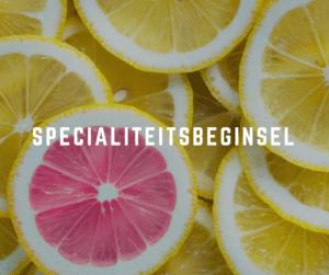 specialiteitsbeginsel